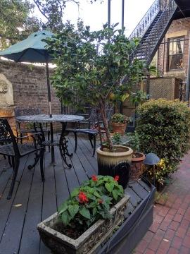 foley garden 3